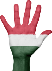 Hungarian nationa logo